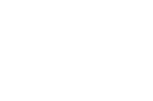 2020 Official Selection to the Durango Independent Film Festival dba Durango Colorado laurel