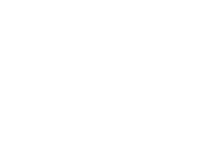 2020 Official Selection to the Oxford Film Festival in Mississippi laurel